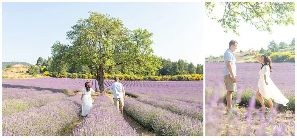 Lieux pour une séance photo en Provence : les champs de lavande de Sault