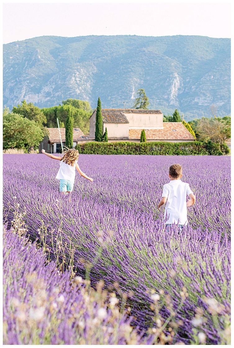 Marie Calfopoulos Photographe Luberon Avignon famille Oppède le Vieux champs de lavande Provence