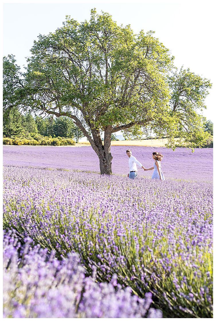 Marie Calfopoulos Photographe couple engagement seance photo Provence Luberon Sault lavander