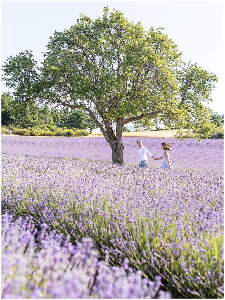 A lavender fields engagement photo session in Sault, Provence